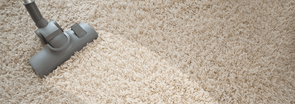 Toledo Carpet Cleaning Best Professional Cleaning Services